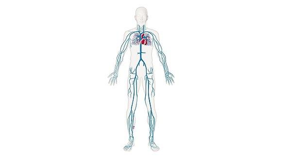 Diagnose & therapie